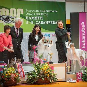 """""""Sabaneev Memoriam"""" 2013"""