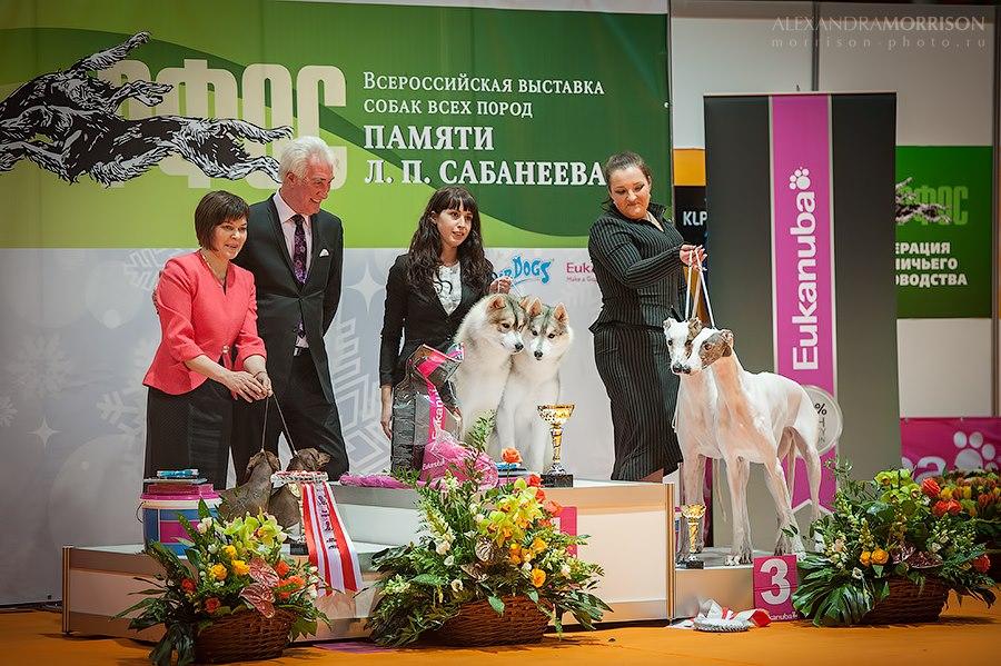Sabaneevka-2013